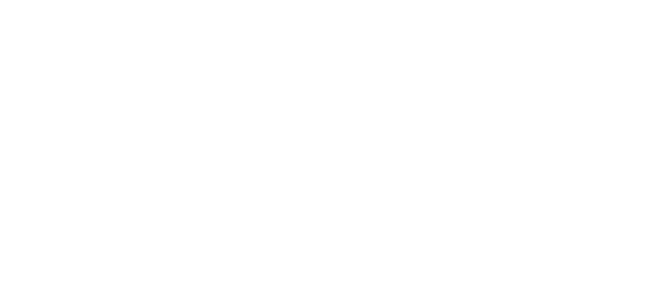 Miller & Martin PLLC